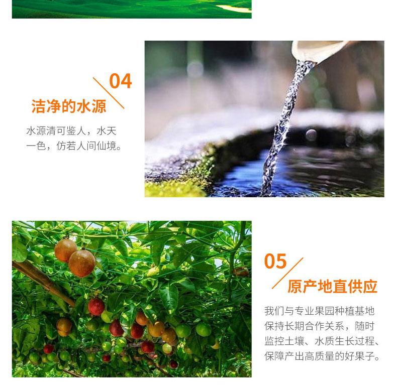 品世百香果_05