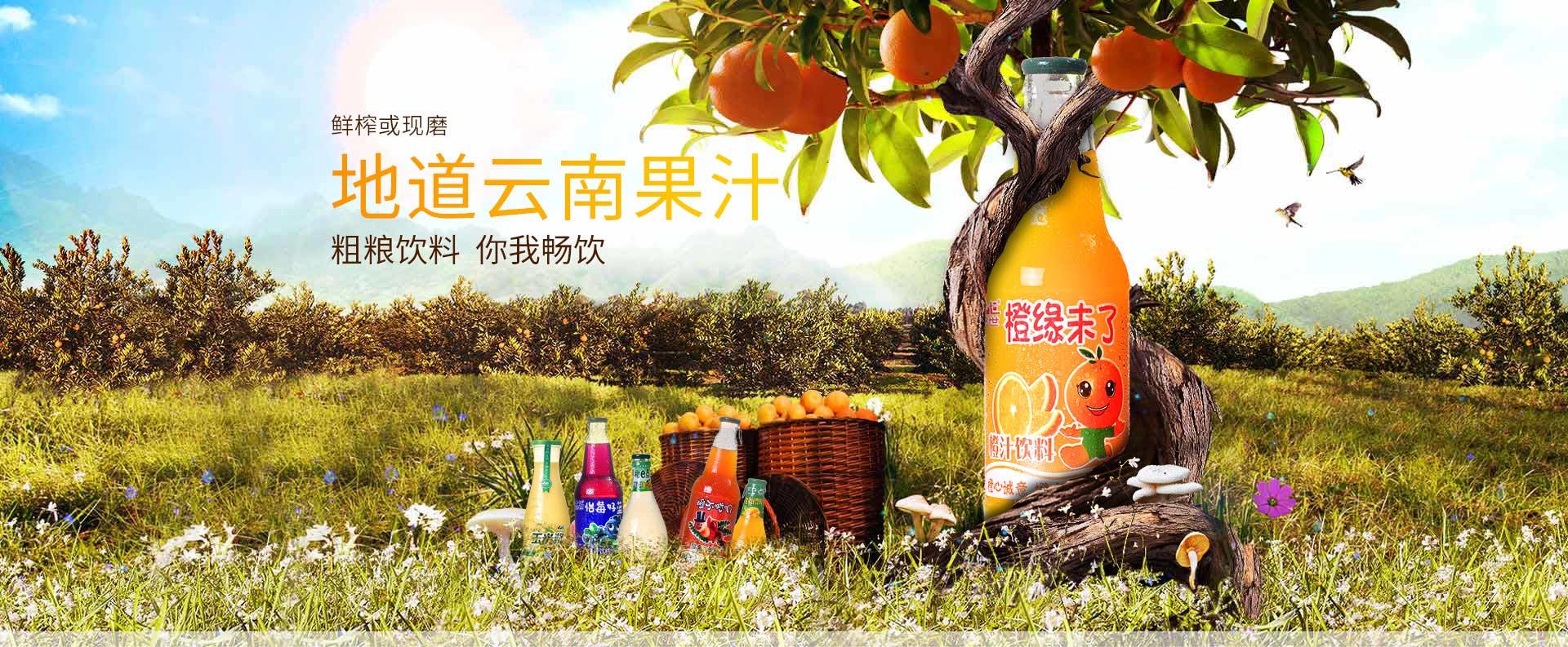 品世饮料,鲜榨或现磨,地道云南果汁