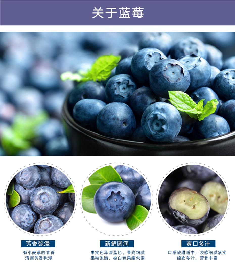 品世蓝莓汁